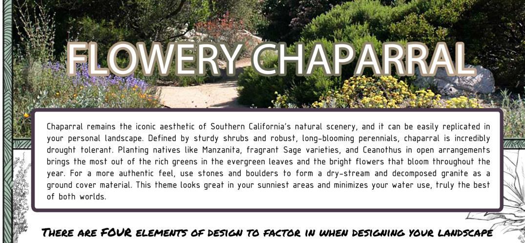 flowery chaparral description banner