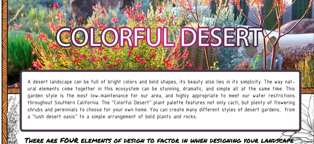 colorful desert description banner